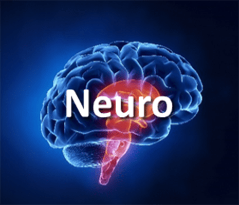 Neurology course image