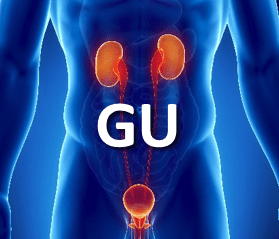 Genitourinary course image
